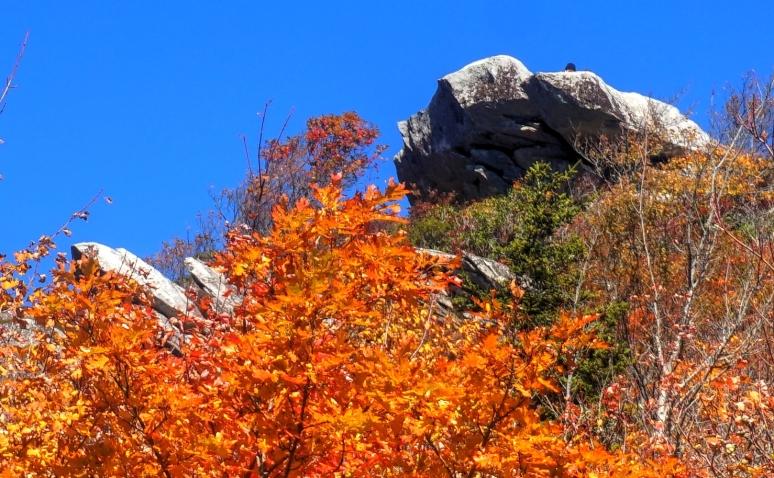 boulder color