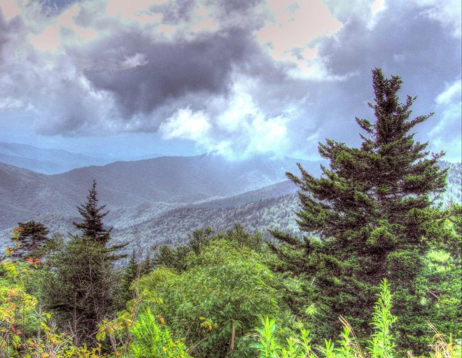 Low Clouds at Clingman's Dome