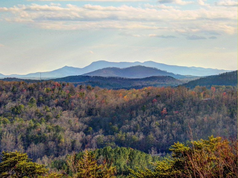 montford cove view of Tryon Mountain