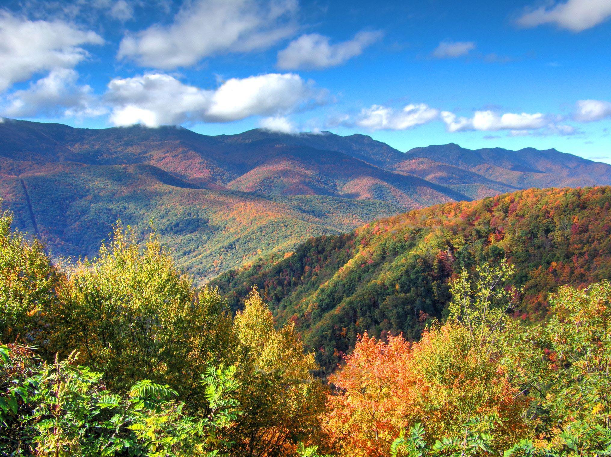 Black Mountains in autumn