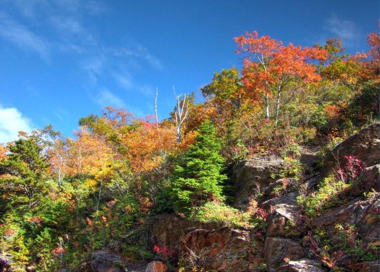 Blue Ridge Parkway Rocky Cliffs